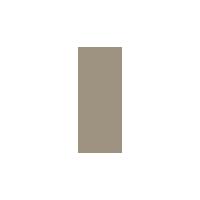 icon_mentoring